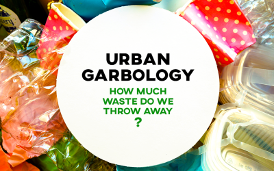 Urban Garbology: How Much Waste Do We Throw Away?